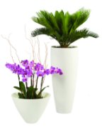 Bianco-Natural Stone Planter Vase