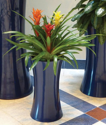 Symmetry Cylinder and Tall Cylinder Cluster in Dark Sapphire with Bromeliads